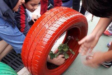 Bahçemizi Güzelleştirelim - Ekoloji | Pendik İlkokulu ve Ortaokul...