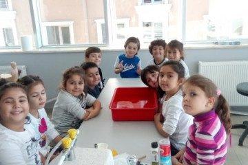 Batan ve Yüzen Cisimler | İstanbul Pendik İlkokulu ve Ortaokulu |...