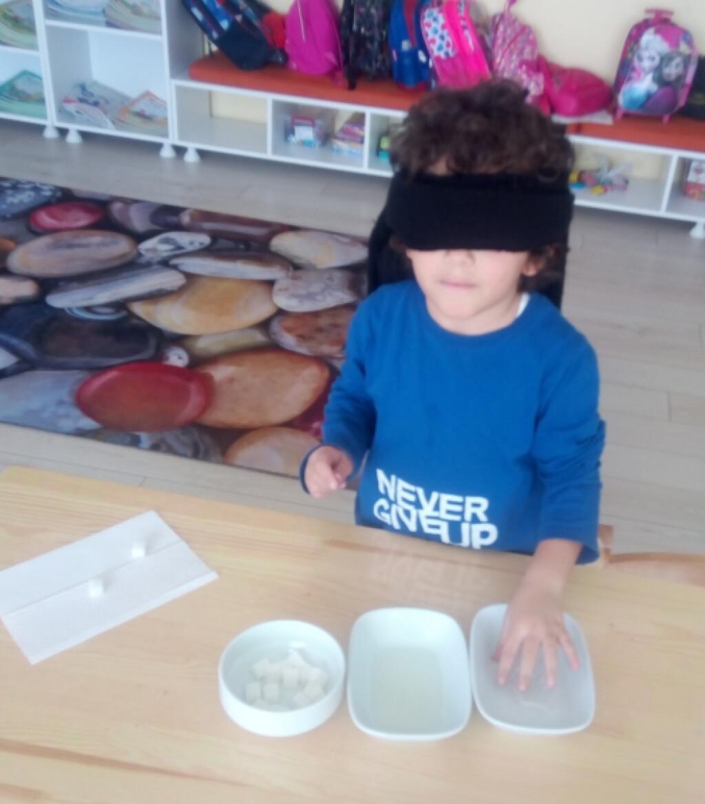 Tat Alma Duyusu | Pendik İlkokulu ve Ortaokulu | Özel Okul