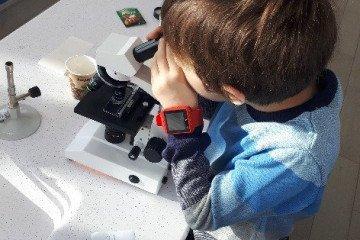 Mikroskopla Tanışıyorum