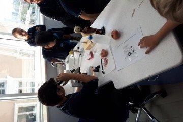 Öğrencilerimiz Mikroskopla İncelemeler Yaptı | Pendik İlkokulu ve...