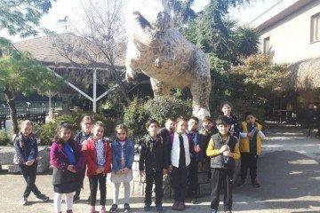 2. Sınıflar Hayvanlar Aleminde Yolculukta
