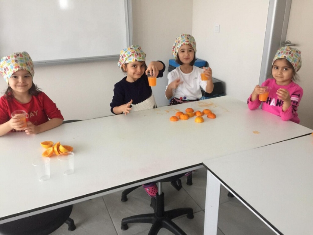 Vitamin Avcıları | Kayseri Konaklar İlkokulu ve Ortaokulu | Özel...