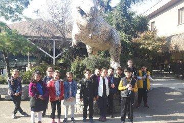 2.Sınıflar Hayvanlar Aleminde Yolculukta:):):) | Pendik İlkokulu...