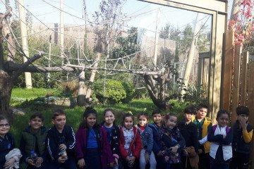 2.Sınıflar Hayvanlar Aleminde Yolculukta:):):)